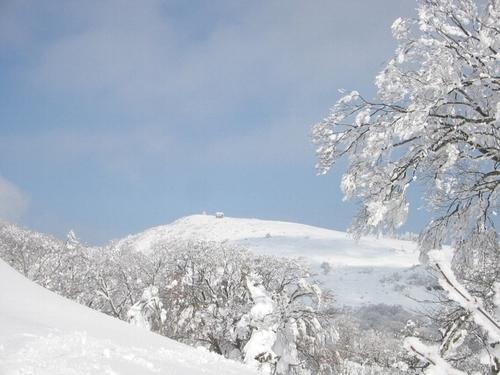 氷ノ山頂上小屋