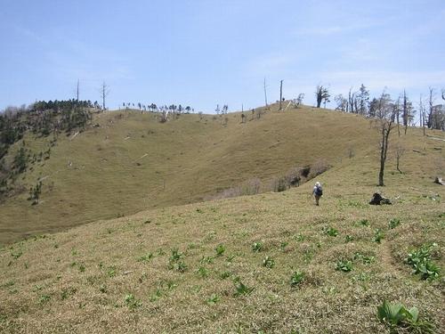 稜線散歩・・・